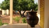 Auf der Terrasse vor dem Büro ein Gefäß mit Trinkwasser.