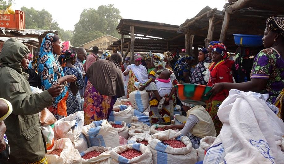 Auf der Seite des CAAS erhalten Sie in einem Blog Einblicke in das ländliche Leben in Mali
