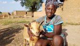 Maii liebt ihre Ziege Kopie